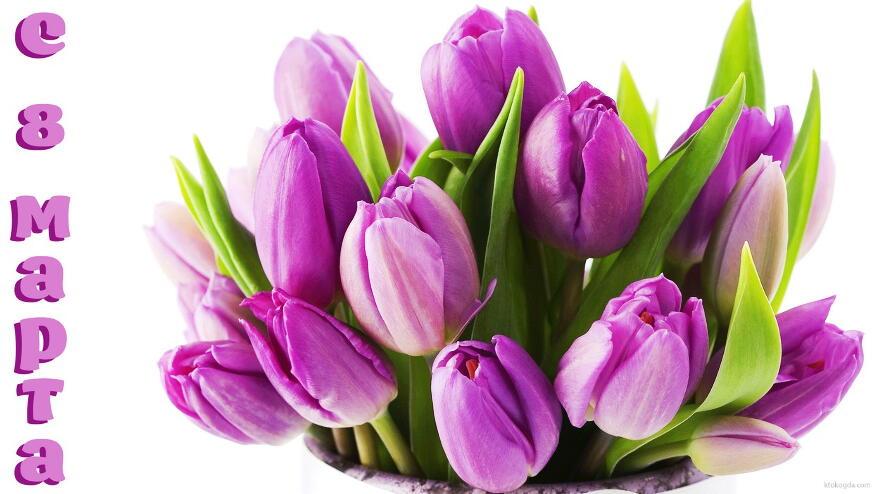 Тюльпаны1